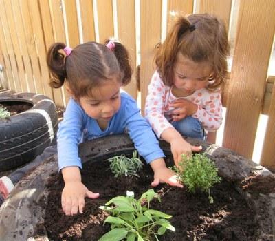 Treballem la natura amb les plantes