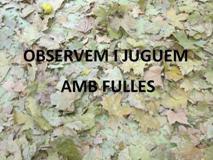 OBSERVEM I JUGUEM AMB FULLES