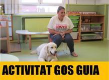 """Imatge de la notícia Projecte: Les famílies participen, """"activitat gos guia"""""""
