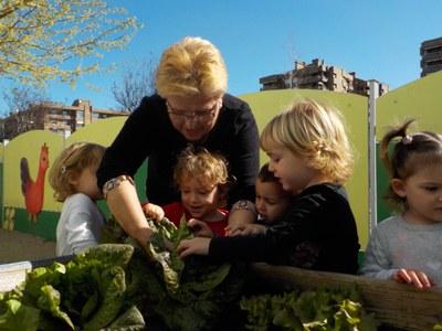 L'hort a traves d'activitats intergeneracionals .segon i tercer trimestre